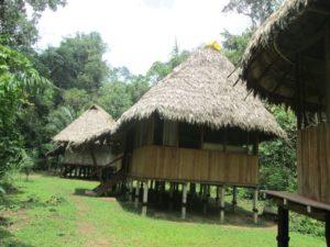 manu native community